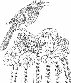 Difficult Adult Coloring Pages to Print Out   78251
