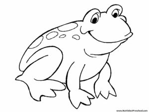 Easy Frog Coloring Pages for Preschoolers   8PS18