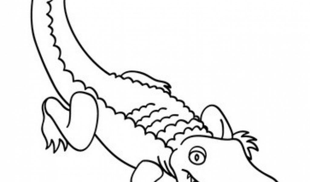 alligator coloring pages for preschool - photo#16