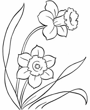 Flowers Coloring Pages Free to Print   3178