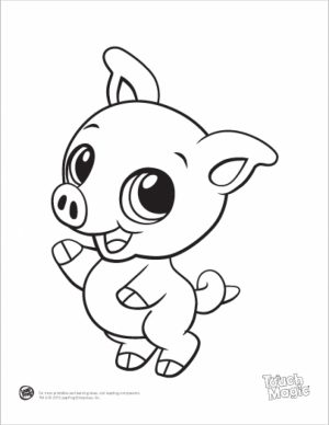 Free Baby Animal Coloring Pages   25762