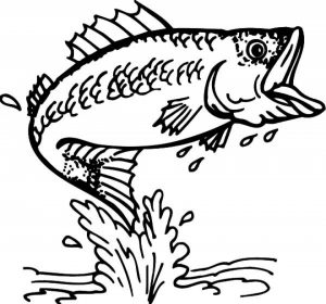 Free Fish Coloring Pages to Print   924309
