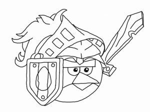 Free Picture of Angry Bird Coloring Pages   mbYjg