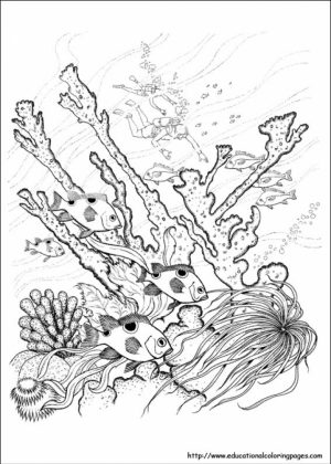 Free Picture of Nature Coloring Pages   prmlr