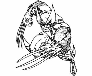 Free Preschool Wolverine Coloring Pages to Print   OLoEv
