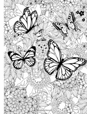 Free Printable Butterfly Coloring Pages for Adults   89371