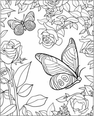 Free Printable Butterfly Coloring Pages for Adults   a512b