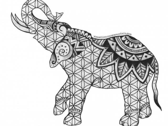 Get This Free Printable Elephant Coloring Pages for Adults nbm582 !