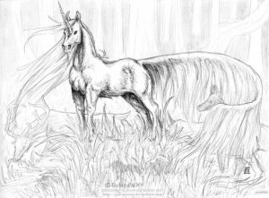 Free Printable Unicorn Coloring Pages for Adults   WZ725