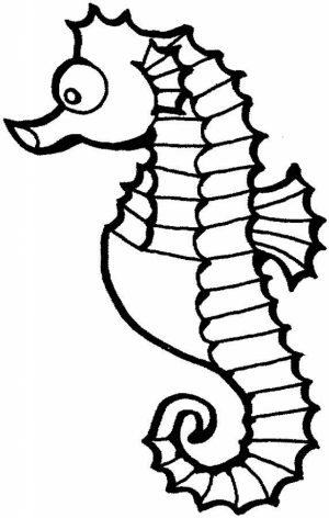 Free Seahorse Coloring Pages   92143