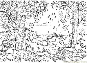 Free Simple Nature Coloring Pages for Children   af8vj