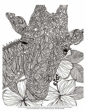Giraffe Coloring Pages for Adults   75891