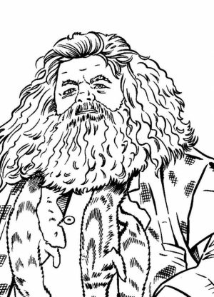 Harry Potter Coloring Pages for Adults   05619