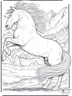 Image of Horses Coloring Pages to Print for Kids   EhR0n