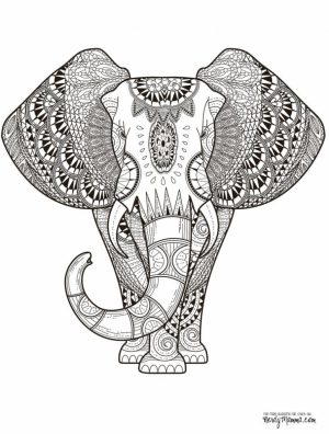 Mandala Elephant Coloring Pages   2x5cf43