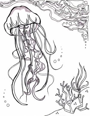 Ocean Coloring Pages for Adults   i57vb