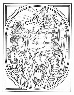 Ocean Coloring Pages for Adults   ufg59
