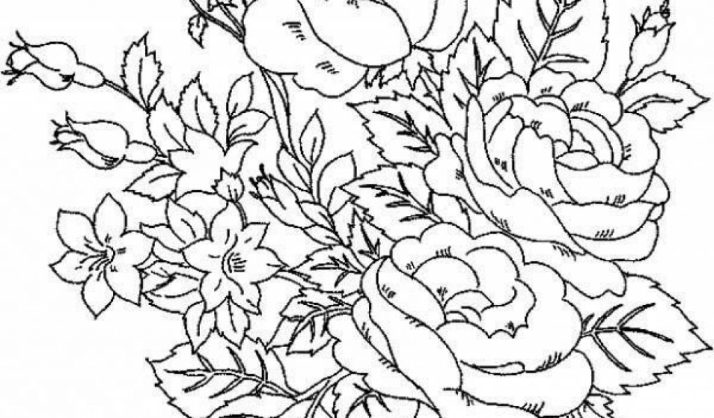 coloring book pages of roses - photo#48