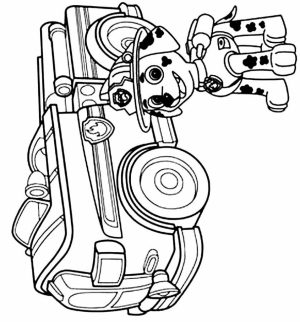 Paw Patrol Coloring Pages for Preschoolers   94614