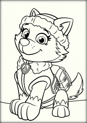Paw Patrol Coloring Pages Free to Print   53867