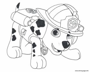 Paw Patrol Preschool Coloring Pages to Print Online   18034