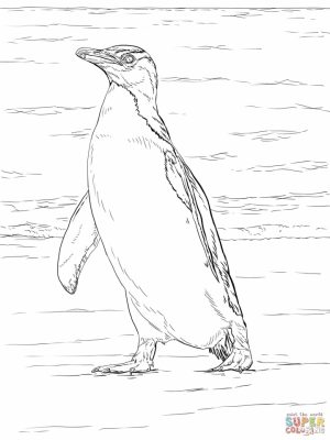 Penguin Coloring Pages for Adults Printable   48931