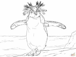 Penguin Coloring Pages for Adults Printable   54172