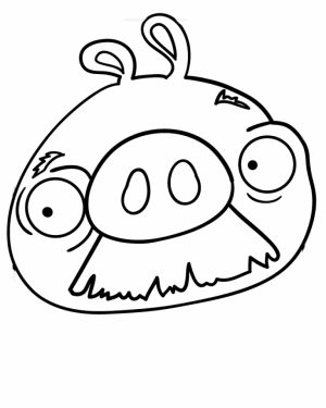 Picture of Angry Bird Coloring Pages Free for Children   S4lii