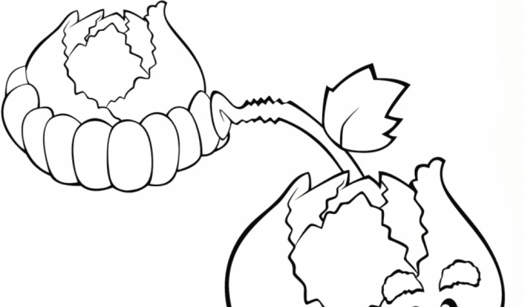 Plants Vs Zombies Coloring Pages Printable Ydg41