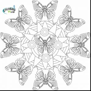 Printable Butterfly Coloring Pages for Adults   74614