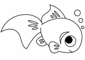 Printable Fish Coloring Pages   810607