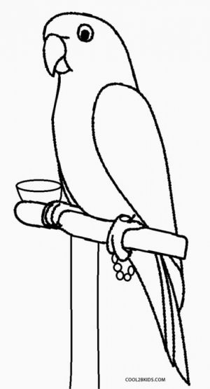 Printable Parrot Coloring Pages   87141