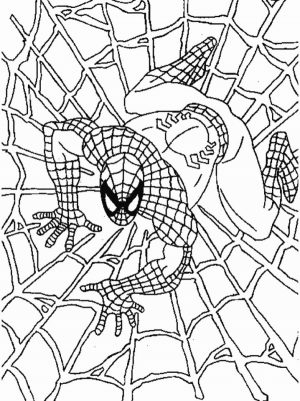 Printable Spiderman Coloring Pages   171702