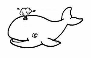 Printable Whale Coloring Pages Online   59307