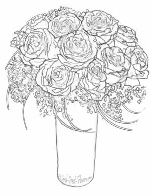 Roses Coloring Pages for Adults Free Printable   9466