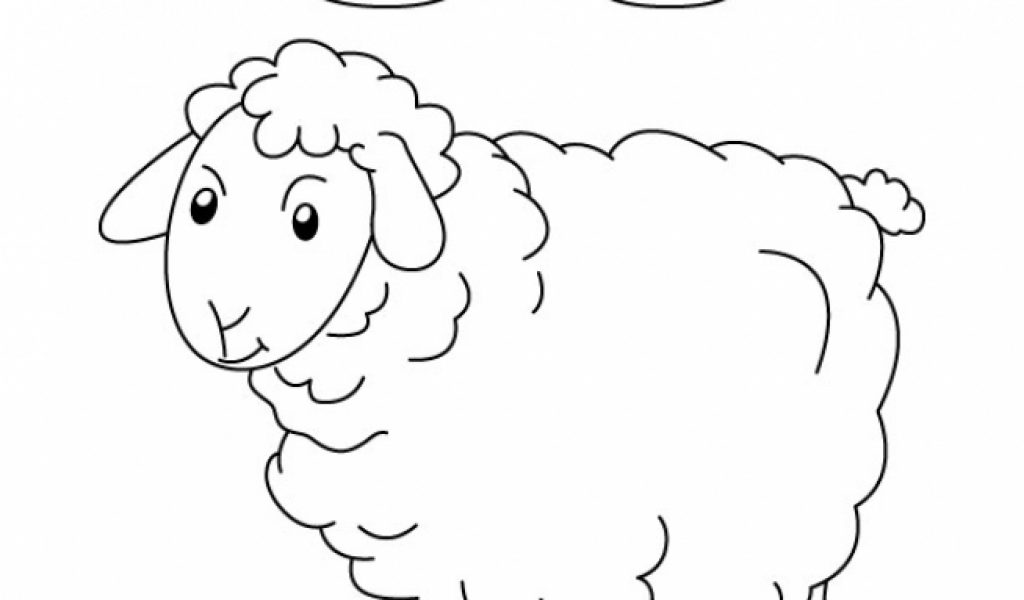 Sheep Coloring Page  Elioleracom