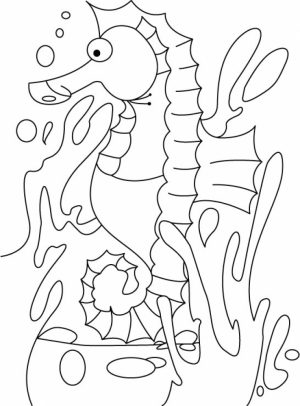Seahorse Coloring Pages Free Printable   22398