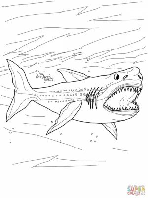 Shark Coloring Pages for Adults   21583
