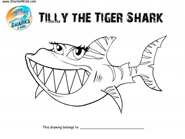 Tiger Shark Coloring Pages Miakenasnet