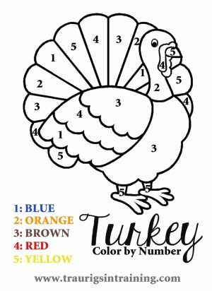 Turkey Coloring Pages Color by Number   96228
