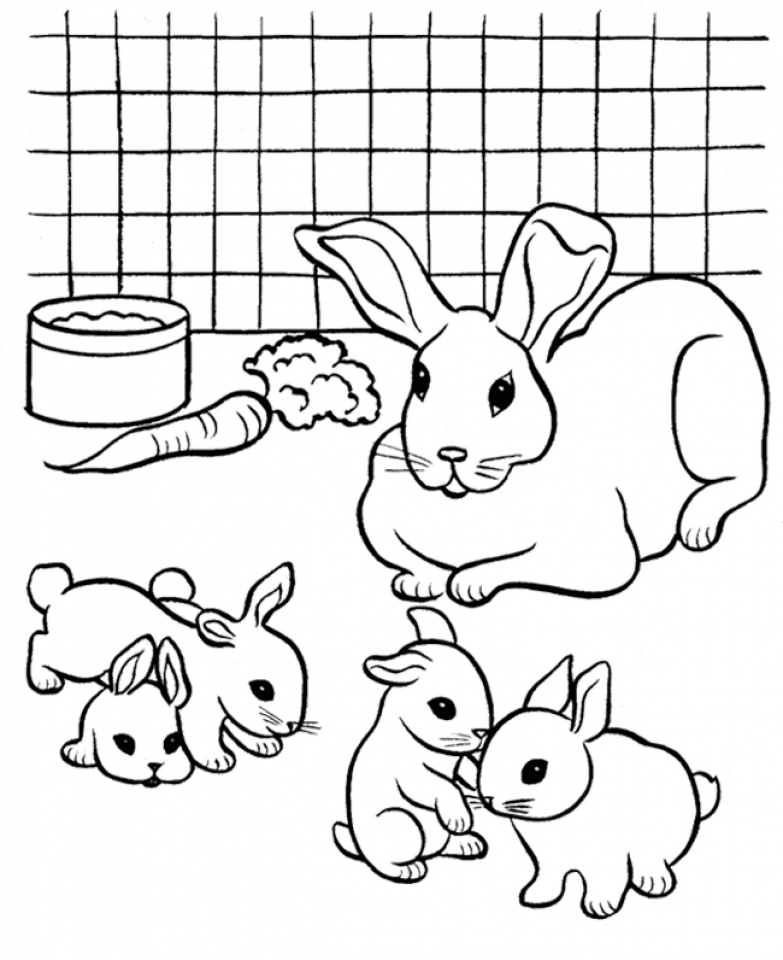 Get This Online Printable Rabbit Coloring Pages 4G45S