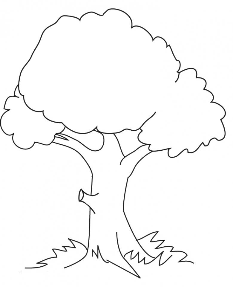 Get This Tree Coloring Pages Online Printable B6QSA