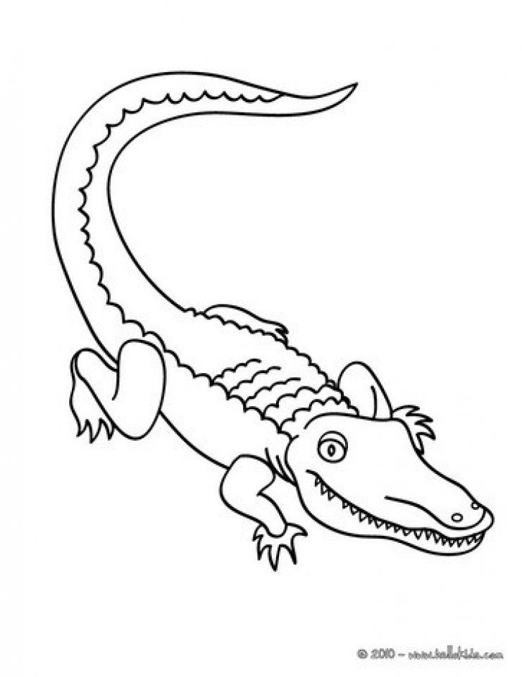 Get This Easy Preschool Printable of Alligator Coloring ...