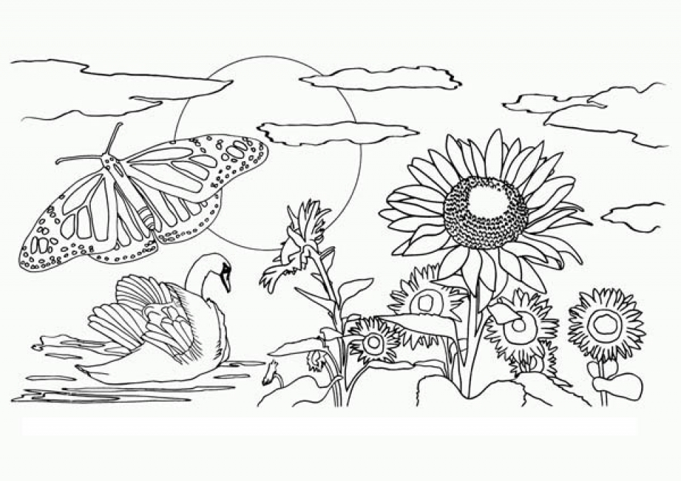 84 nature coloring pages coloring pages for adults nature colouring doodles and autumn