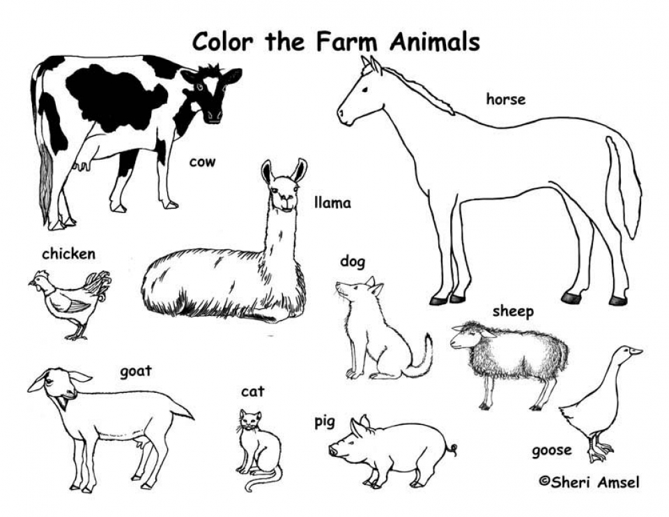 Get This Farm Animal Coloring Pages