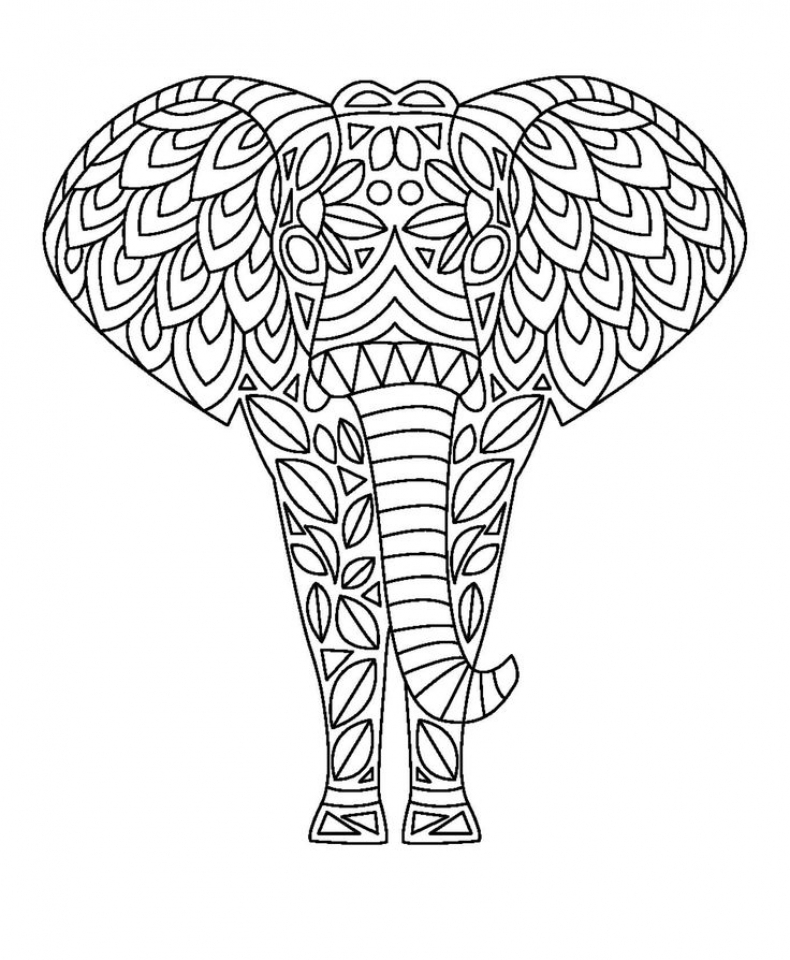 Free Printable Elephant Coloring Pages For Adults Qer7909