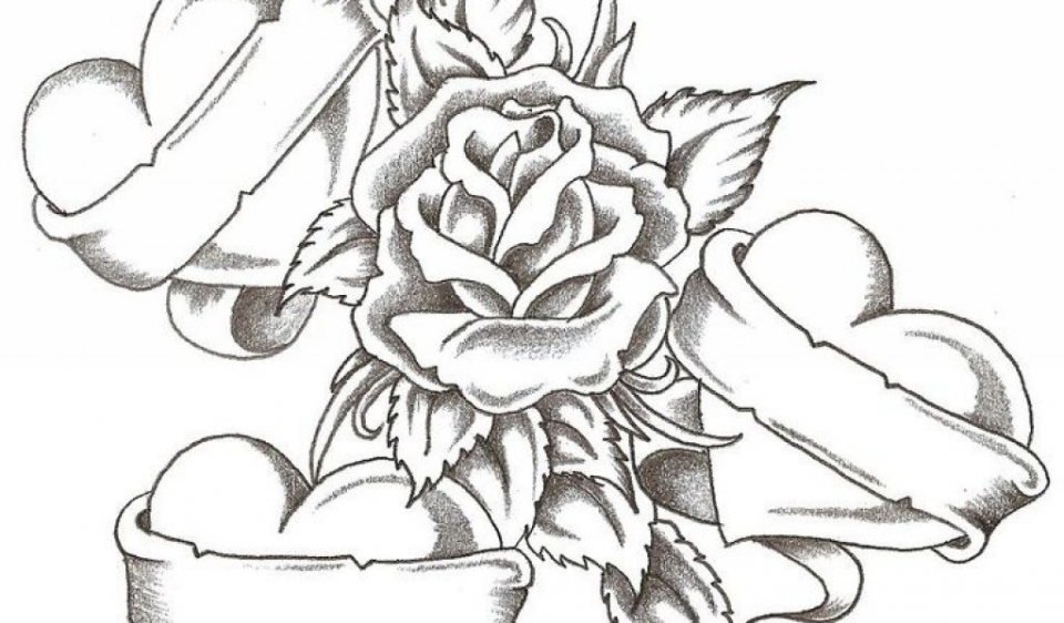 free roses coloring pages for adults to print 18251 - Coloring Pages Roses