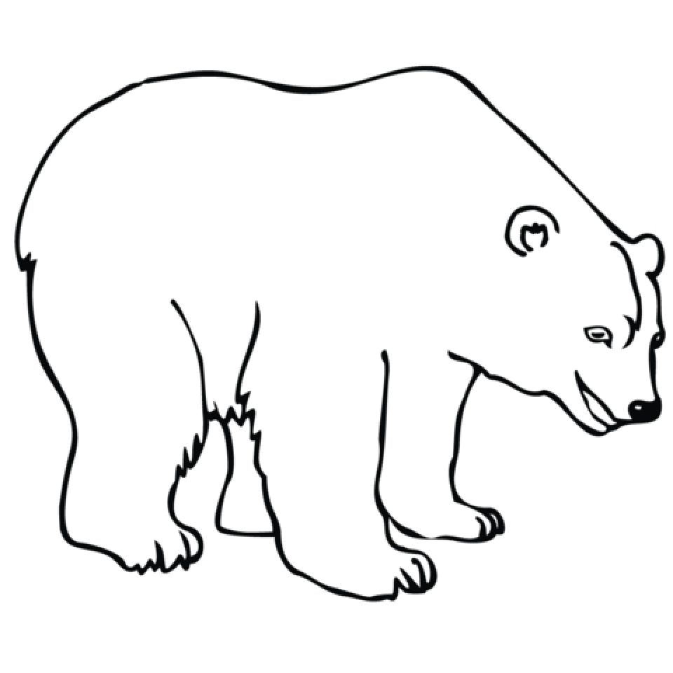 Get This Image Of Polar Bear Coloring Pages To Print For Kids Uan64