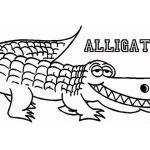 kids printable alligator coloring pages x4lk2 - Alligator Coloring Pages Printable