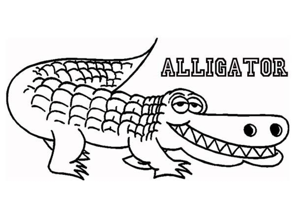 alligator coloring pages for kids - alligators free coloring pages
